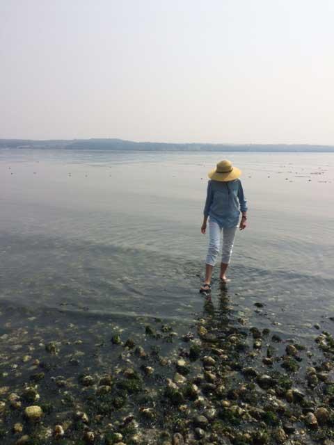 アメリカ シアトル近郊の島の浜辺